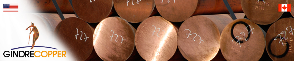 Metals and currencies prices | Gindre Copper